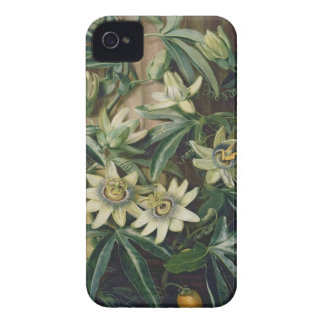 Blue Passion Flower for the 'Temple of Flora' by R iPhone 4 Case-Mate Case