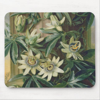 Blue Passion Flower for the 'Temple of Flora' by R Mouse Mat