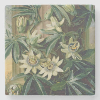 Blue Passion Flower for the 'Temple of Flora' by R Stone Beverage Coaster