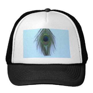Blue Peacock Feather P Hats