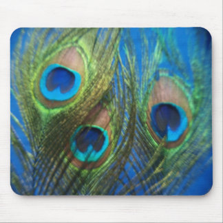 Blue Peacock Feathers Mousepad
