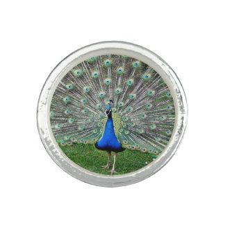Blue Peacock Rings