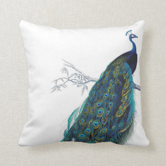 Blue Peacock with beautiful tail feathers Cushion