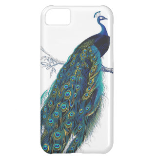 Blue Peacock with beautiful tail feathers iPhone 5C Case