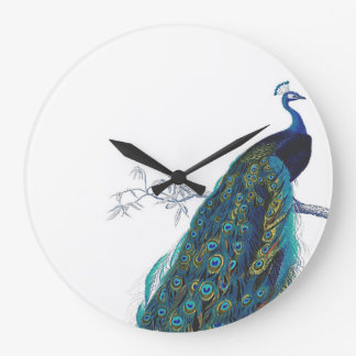 Blue Peacock with beautiful tail feathers Wallclocks