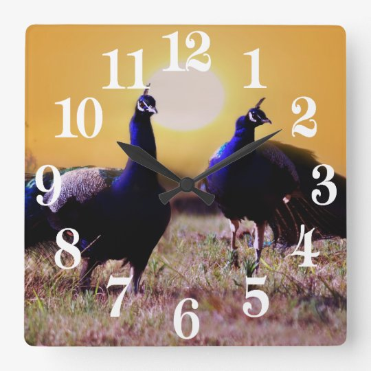 Blue peacocks square wall clock