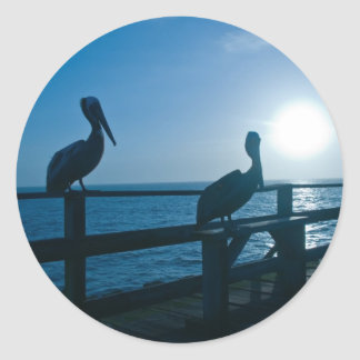 Blue Pelican/Sticker Classic Round Sticker
