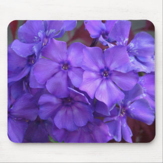 Blue Phlox Flowers Mousepad