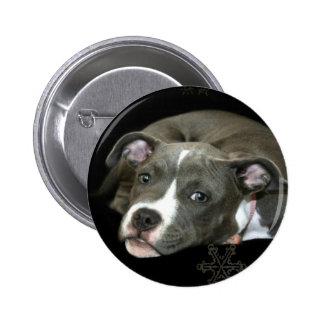 Blue Pitbull Puppy Button