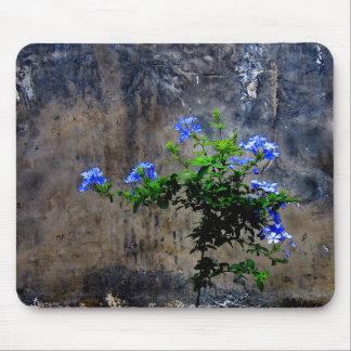 Blue Plumbago Flower Mouse Mat