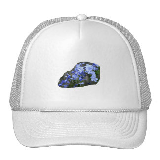 Blue Plumbago Flowers Cascade Photo Hats