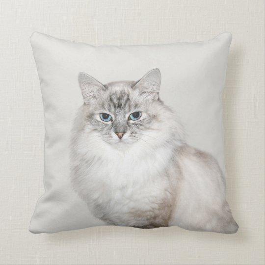 Blue point Himalayan cat Cushion