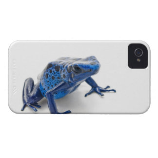 Blue Poison Dart Frog (Dendrobates Tinctorius) Case-Mate iPhone 4 Case