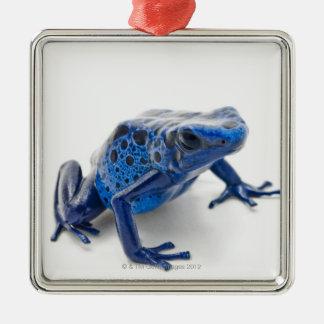 Blue Poison Dart Frog (Dendrobates Tinctorius) Christmas Ornament