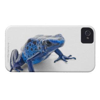 Blue Poison Dart Frog (Dendrobates Tinctorius) iPhone 4 Cover
