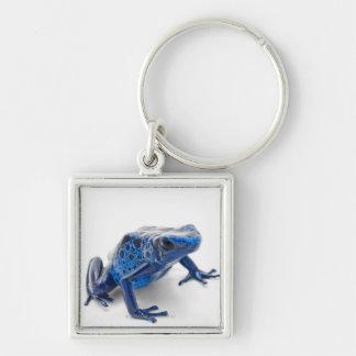 Blue Poison Dart Frog Dendrobates Tinctorius Key Chains