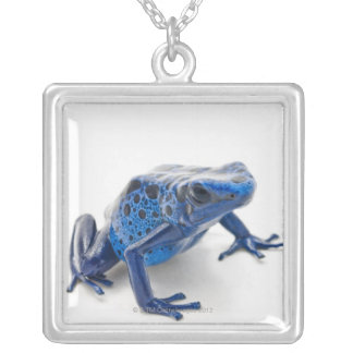 Blue Poison Dart Frog (Dendrobates Tinctorius) Silver Plated Necklace