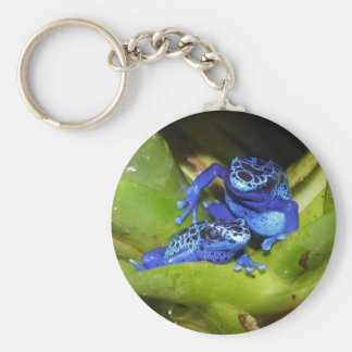 Blue Poison Dart Frogs In Leaf 1 Basic Round Button Key Ring