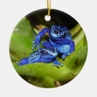 Blue Poison Dart Frogs In Leaf 1 Christmas Ornament