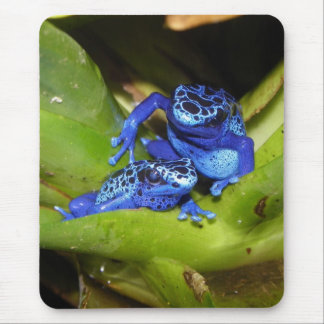Blue Poison Dart Frogs In Leaf 1 Mouse Mat