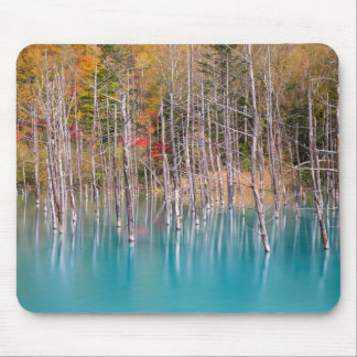 Blue Pond at Autumn mouse pad