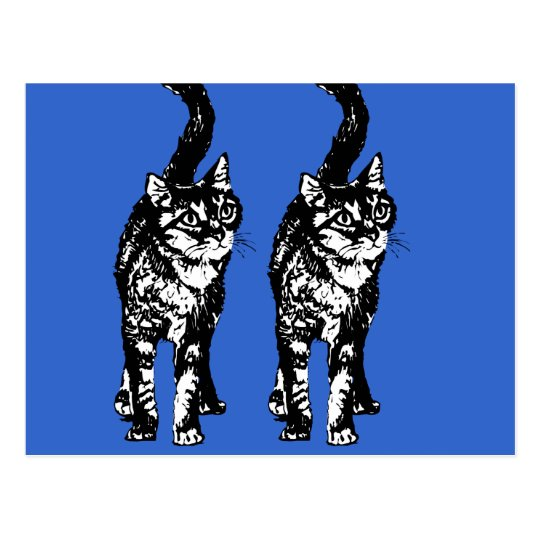 Blue postcard with two black cats