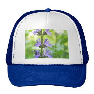 Blue Queen Salvia Flowers Mesh Hat