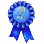 Blue Ribbon 1st Place Photo Sculpture Badge