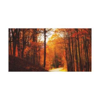 Blue Ridge Parkway Fall Canvas Print