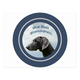 Blue River Weims logo Postcard