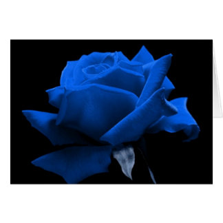 Blue Rose Card