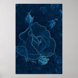 blue rose contour poster