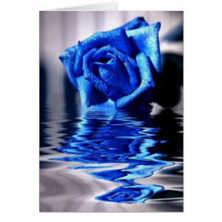 Blue Rose Reflections Floral Pattern Card