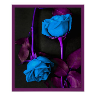 Blue Roses Print -20x24 -other sizes available
