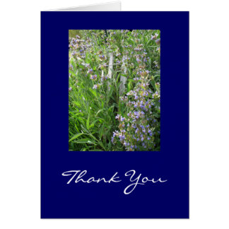Blue Sage Thank You Cards