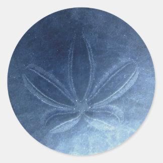 Blue Sand Dollar Sticker
