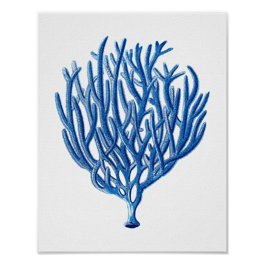 Blue Sea Coral Print #1 Beach Wall Art