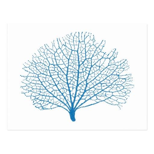 Blue Sea Fan Coral Silhouette Postcard