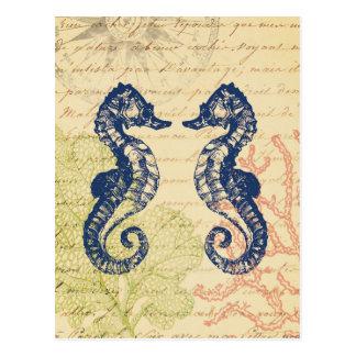 Blue Sea Horses Collage Postcard