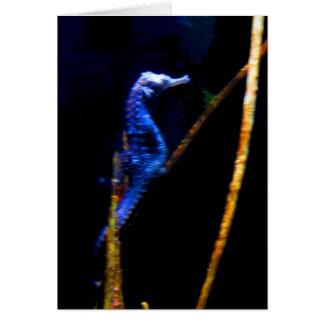Blue Seahorse CB Card