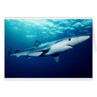 Blue Shark Fish Ocean Beach Animal Destiny Fun Art Greeting Cards