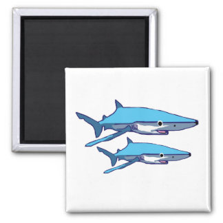 Blue-Shark magnet
