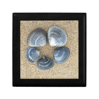Blue shells small square gift box