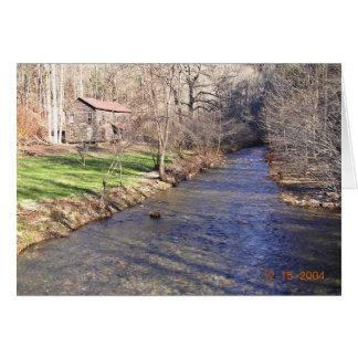 Blue shiner habitat with stream greeting card