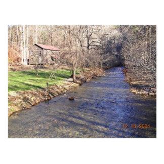 Blue shiner habitat with stream postcard
