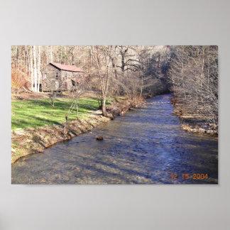 Blue shiner habitat with stream poster