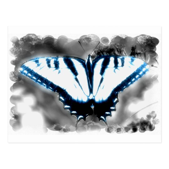 Blue Shock Butterfly Postcard