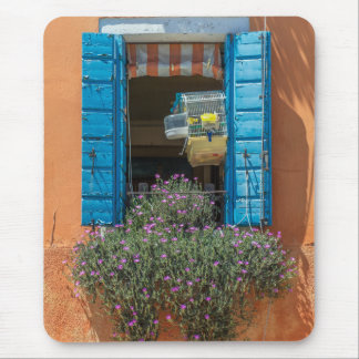 Blue shutters window and birdcage mousepad