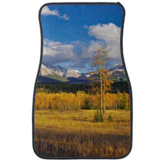 Blue skies and clouds above a meadow car mat