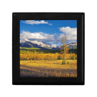 Blue skies and clouds above a meadow gift box
